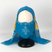 ゼルダの伝説 ブレスオブザワイルド リンク 衣装