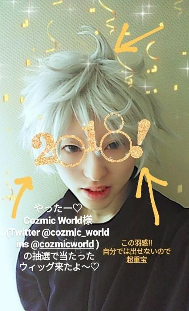 オーダーメイド コスプレウィッグ cozmicworld.com