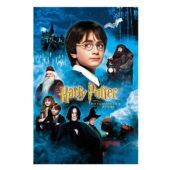 ハリーポッター 魔法 種類 おもしろい